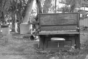 old piano in field